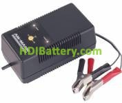 Cargador Batería de Plomo 6V, 12V y 24V